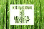 विश्व जैव विविधता संरक्षण दिवस
