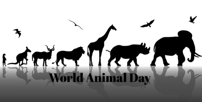 विश्व पशु कल्याण दिवस