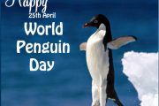 #WorldPenguinDay