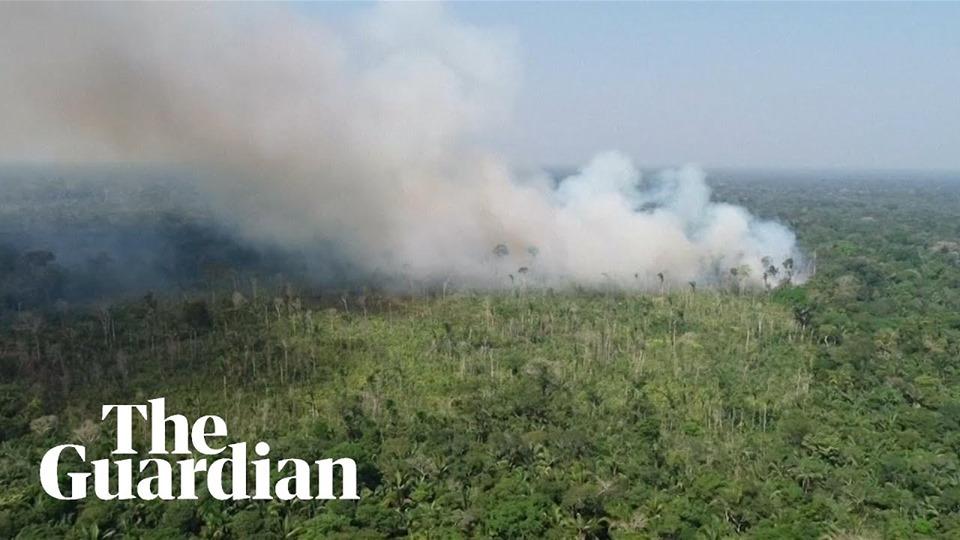 ब्राजील क्यों न जलाए अपने जंगल ???